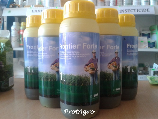 Frontier Forte-1l